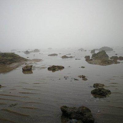 海尾湿地公园