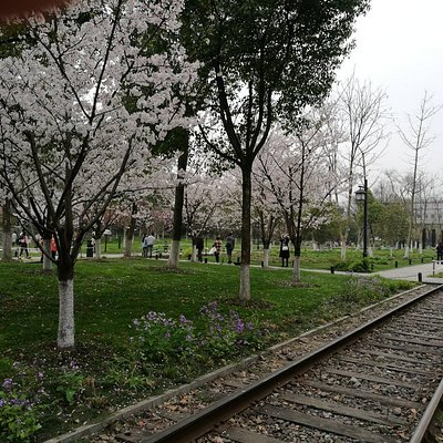 白塔公园和铁轨