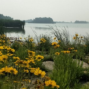 自然广阔,北方西湖