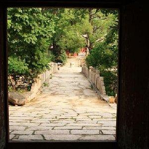 从弥勒佛的门口向外看
