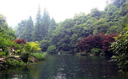 九溪里的湖泊