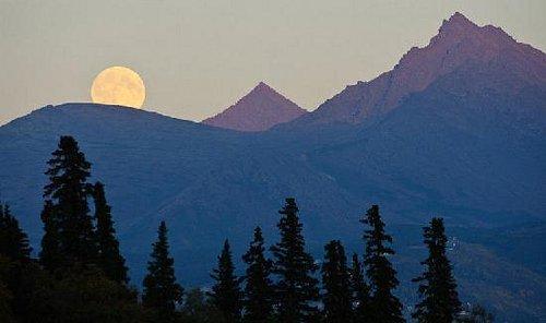 月亮都爬上那个山啦。