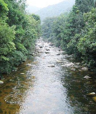 这是山脚下,水还比较平缓