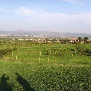 植物园的部分景色