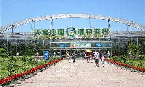 园内热带植物园