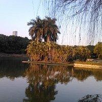 夕阳中的文山湖