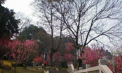 福州乌山公园