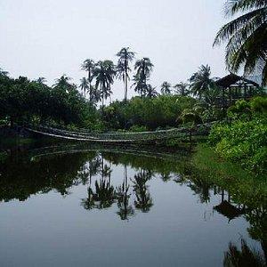 热带风情的田园诗歌