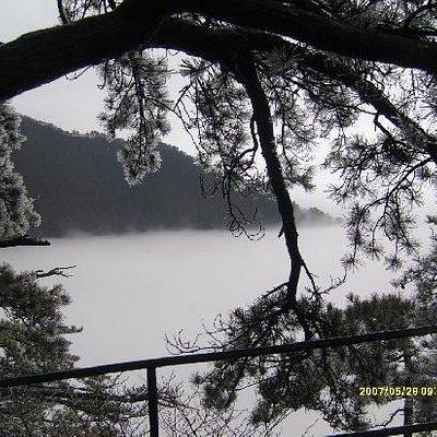 美丽的雾凇
