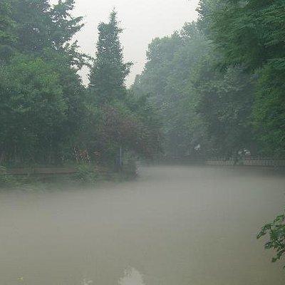 沿着草堂路的小河流,被雾气笼罩