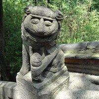 笑的如此开心的狮子