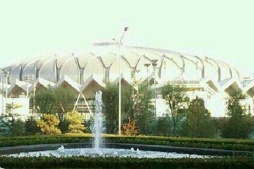 荷花形状的体育馆