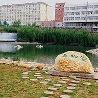 桃源五柳湖