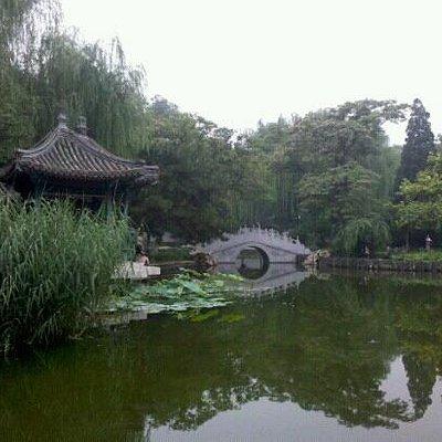 公园里面的小湖