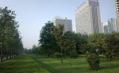 公园一景2