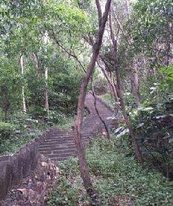 深圳南山公园