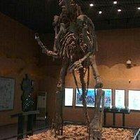 展示的骨架