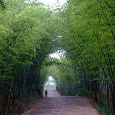 蜀南竹海里著名的一个景点