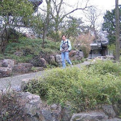 听枫园的美景