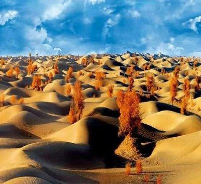 英尔力克沙漠