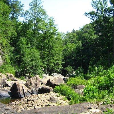 Creek below Lula Falls