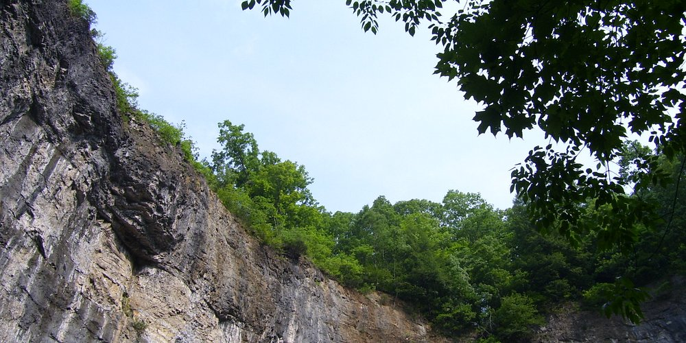 a view of from the bottom of the gorge