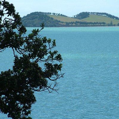 Kawakawa Bay, near Auckland