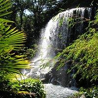 Shampoo anyone?...Iveagh Gardens