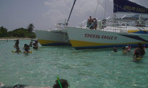 catamarans big enough for all