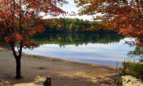 Walden in Autumn