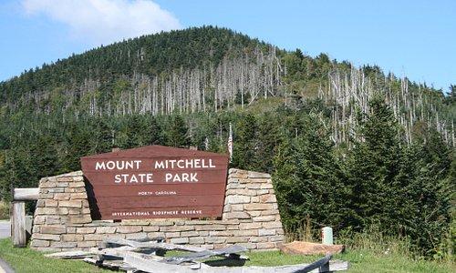 Mt. Mitchell SP