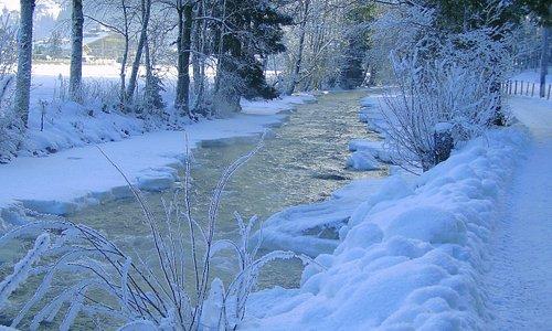 Great winter walks
