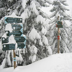 Signposts in Nordmarka - Blue for summer / Red for winter