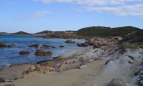 playas vírgenes en la Isla de la Magdalena