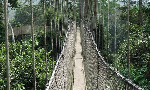 The Rope Walkways