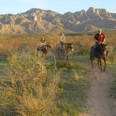 Pusch Ridge Stable sunset trail ride