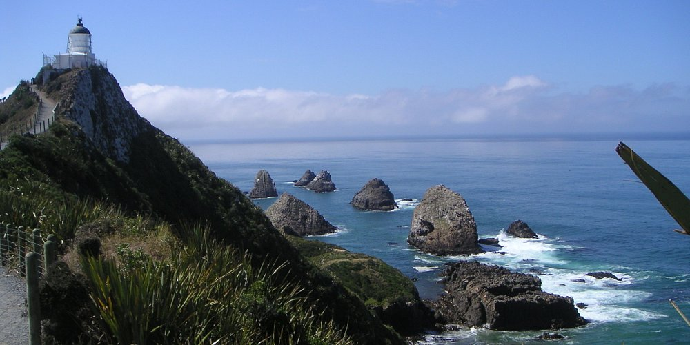 Nugget Point, looking South