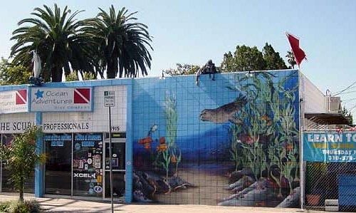 Venice Dive Shop Store front