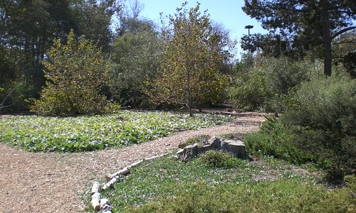 Paths meander throughout the centers 18 acres.