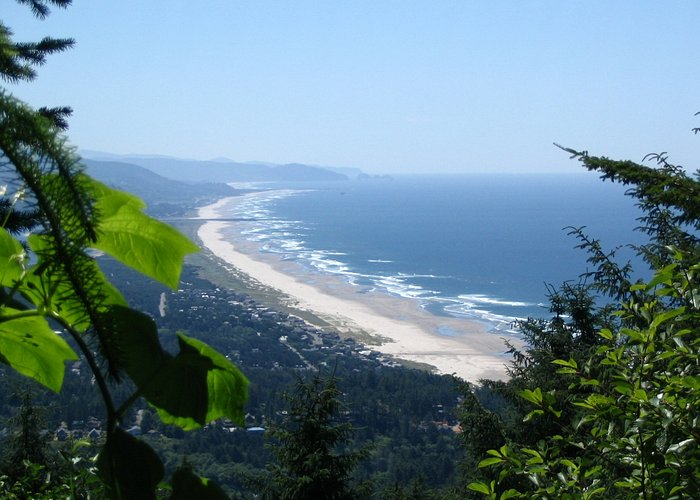 View of the beach from Hwy 101