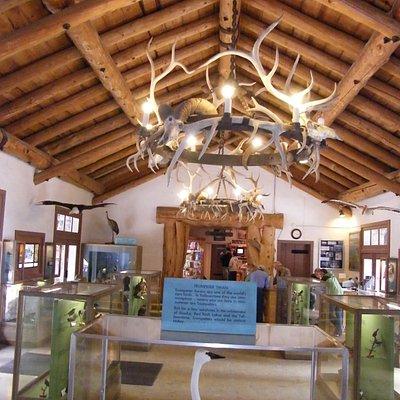Fishing Bridge Visitor Center