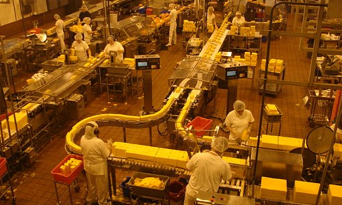 Cheese factory floor