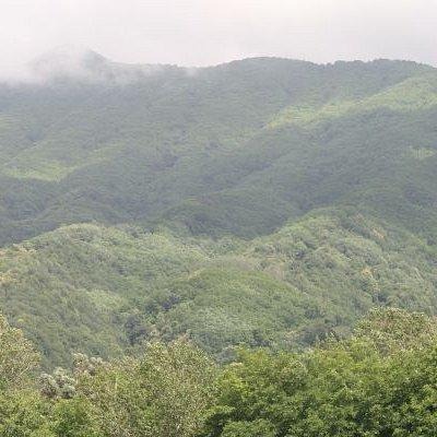 View of Mount Somma from Villa Egea, Massa di Somma