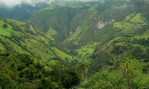 Verdant valley.