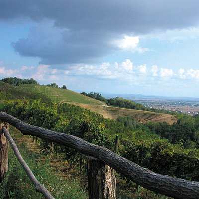 Il panorama dalla collina di Savorgnano