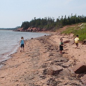 Beach at Northumberland Provincial Park