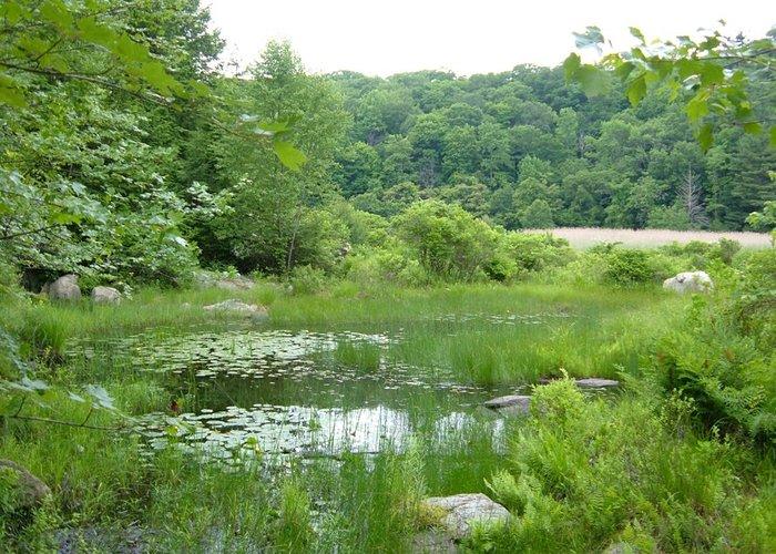 AT in Fahnestock State Park, NY