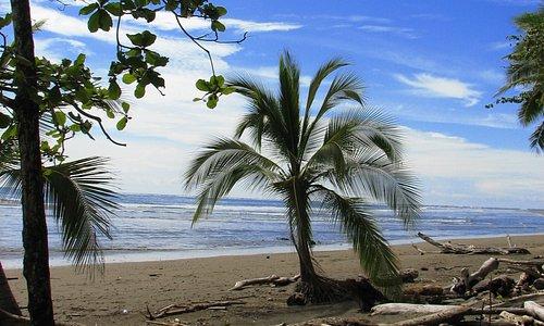 Mata Palo Beach
