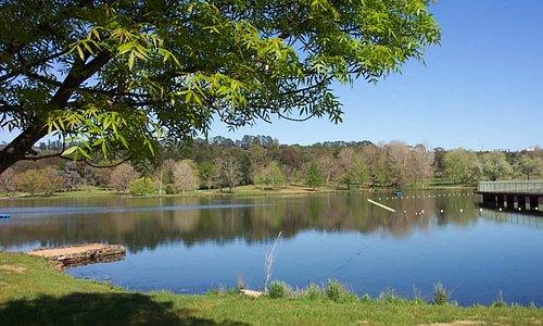 Lake Canobolas 2, NSWsnowfire