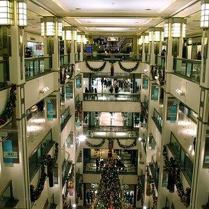 Atrium View #2